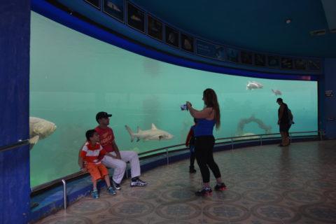 Acuario de Mazatlán