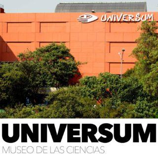 Los Museos en CdMx 24, guía rápida de visita.