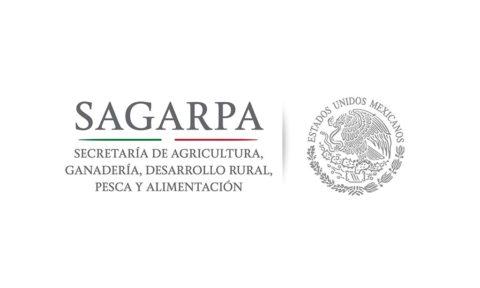 ¿Qué significa en México el acrónimo SAGARPA?