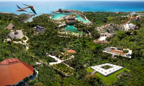Eco parque Xcaret: el mejor parque temático del mundo.
