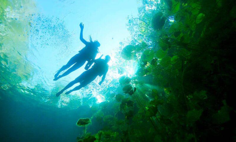 Xenotes, un recorrido por los cenotes de la Riviera Maya.